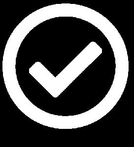 icon gt 1
